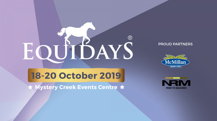 Facebook Cover Equidays 2019